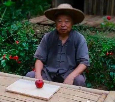 中国大爷玩木头油管吸粉100多万,歪果仁惊叹:这是什么神仙功夫?